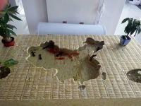 岩棉复合板产品展示